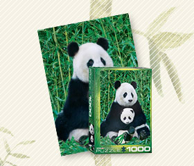 Shop Pandas to Celebrate our New Arrival!